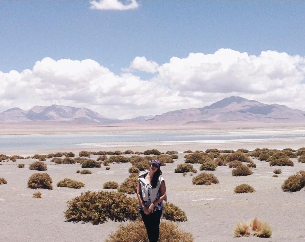 Roteiro Deserto Atacama Salar de Tara