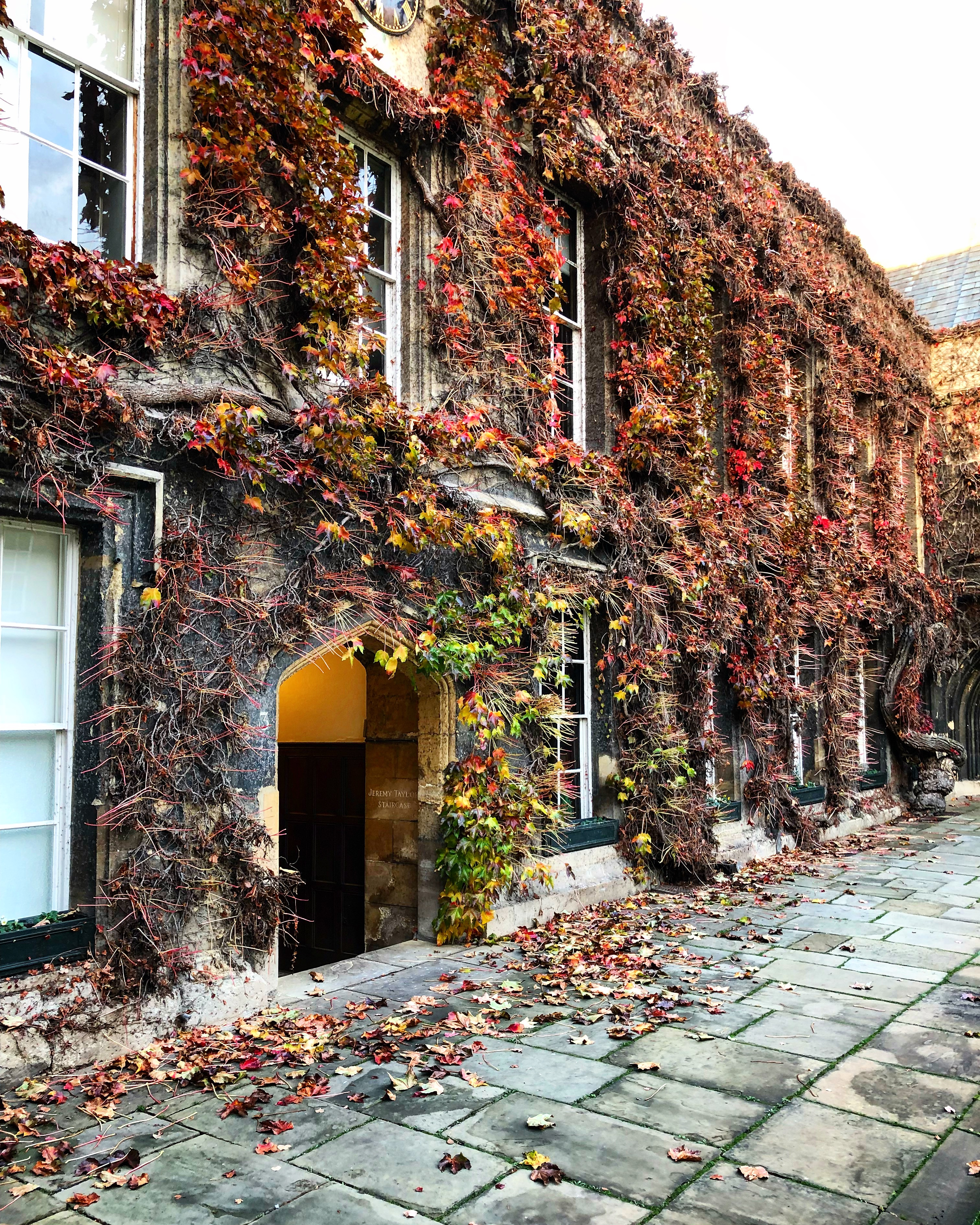 Visit the colleges of Oxford