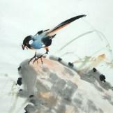 Yang qiaoling, Ink on Xuan Paper, Bird4, Size (40x40cm)2015