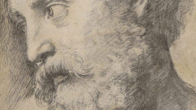 """Raffael - Ausstellung, Apostelkopf (Studie für die """"Transfiguration""""), 1519 - 1520 © Albertina, Wien - Art On Screen - NEWS [AOS] Magazine"""