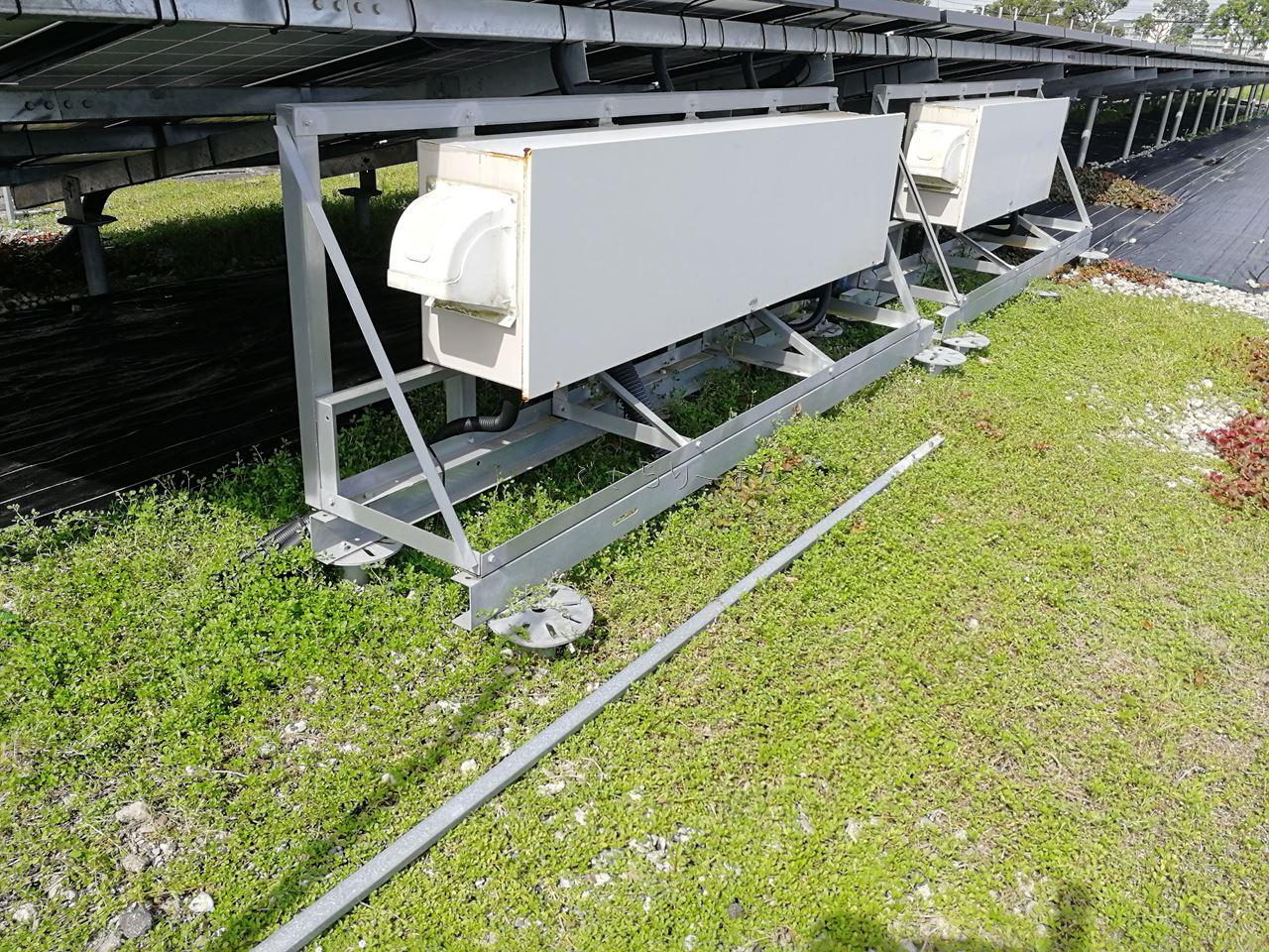 2019年夏の太陽光発電所の点検完了!クラピア大繁殖の夏でした
