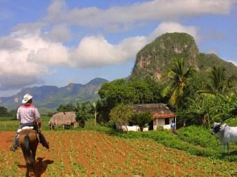 lugares-para-conhecer-em-2016-vinales-cuba 10 Lugares para conhecer em 2016 (e não em outro ano)