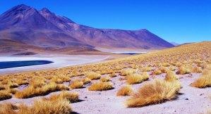 O Deserto árido do Atacama
