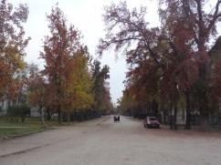 roteiro-santiago-7-a-10-dias-parque-quinta-normal Roteiro Santiago e Região 7 a 10 dias (Completíssimo)