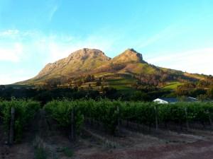 melhores locais para se hospedar na cidade do cabo stellenbosch