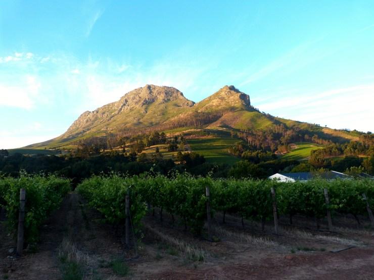 melhores-locais-para-se-hospedar-na-cidade-do-cabo-stellenbosch Melhores locais para se hospedar na Cidade do Cabo