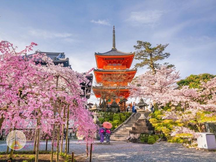 melhores-lugares-para-viajar-esse-ano-japão Os 10 melhores lugares para viajar em 2020