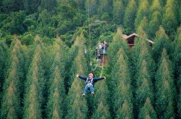 Lugares para viajar no inverno-monte-verde