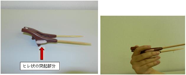 ヒレ状の部分写真