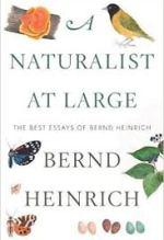 Bernd Heinrich, A Naturalist At Large