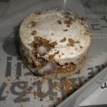 タランドゥスオオツヤクワガタの幼虫、カワラ菌糸交換