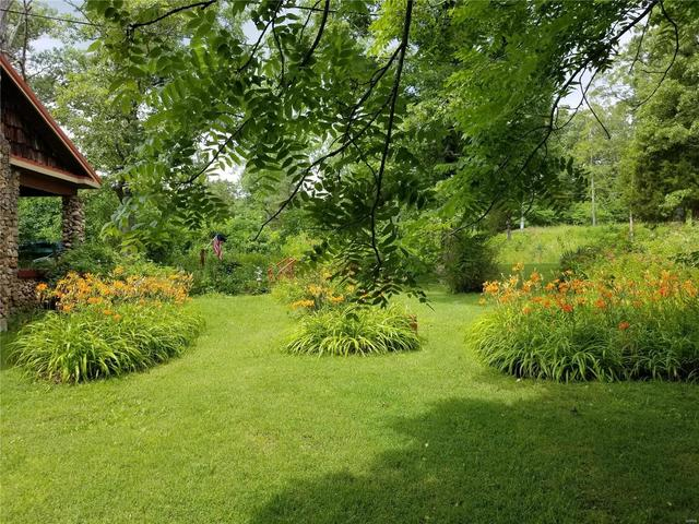 Yard featured at 282 Gum Tree Rd, Middle Brook, MO 63656