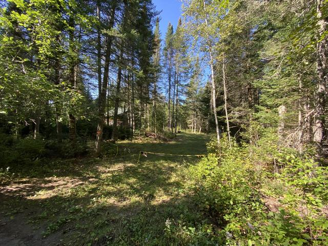 Farm land featured at 21 Smith Rd, Macwahoc Plt, ME 04451