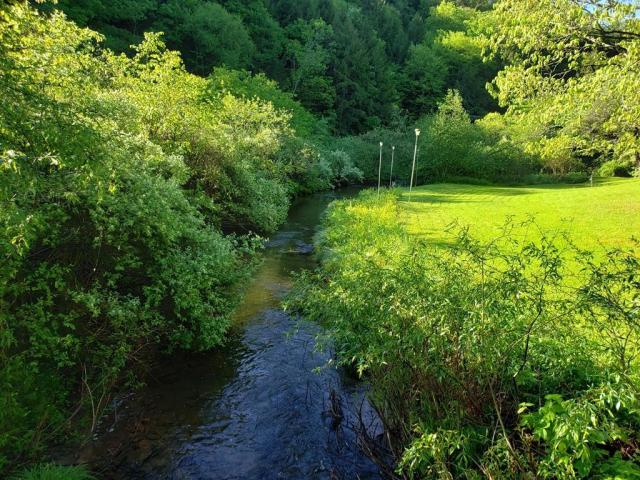 Water front featured at 39 Pine Hill Rd, Galeton, PA 16922
