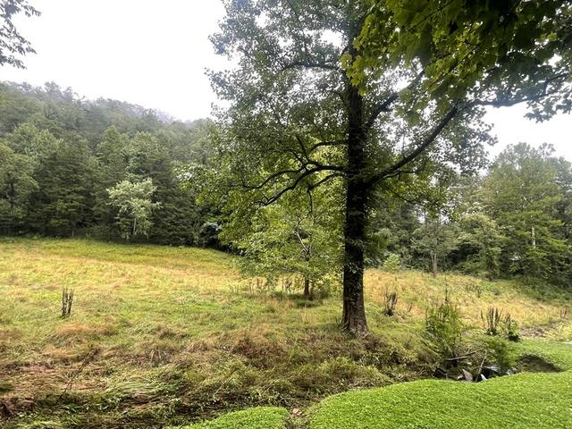 Farm land featured at 72 Linden Br, Stanville, KY 41659