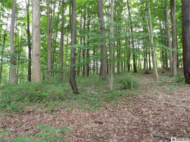 Farm land featured at 3035 Route 394, Ashville, NY 14710