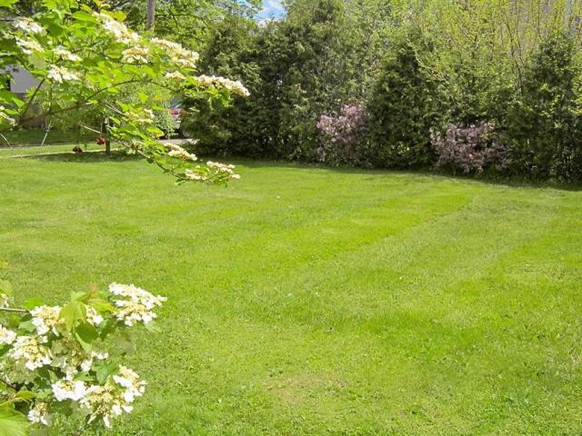 Yard featured at 706 N Gay St, Mount Vernon, OH 43050