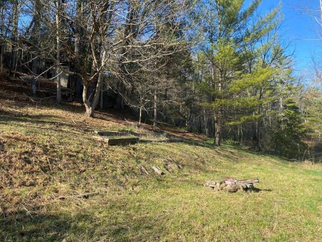 Farm land featured at 124 Crescent St, Beaver, WV 25813