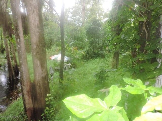 Farm land featured at 7032 Riverrun Rd, New Port Richey, FL 34655