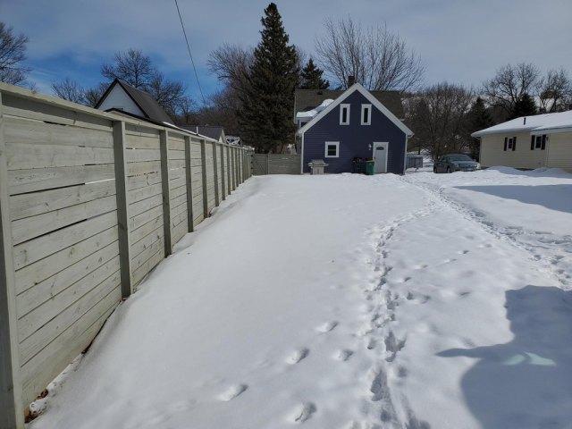 Yard featured at 220 Fremont St S, Lake Benton, MN 56149