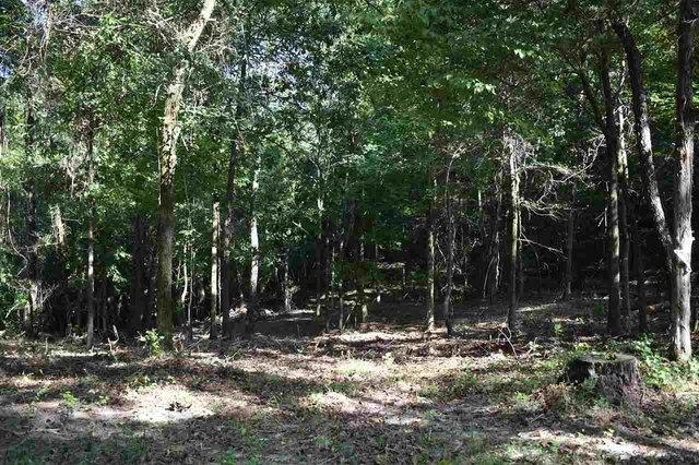 Farm land featured at 112 Falcon St, Selmer, TN 38375
