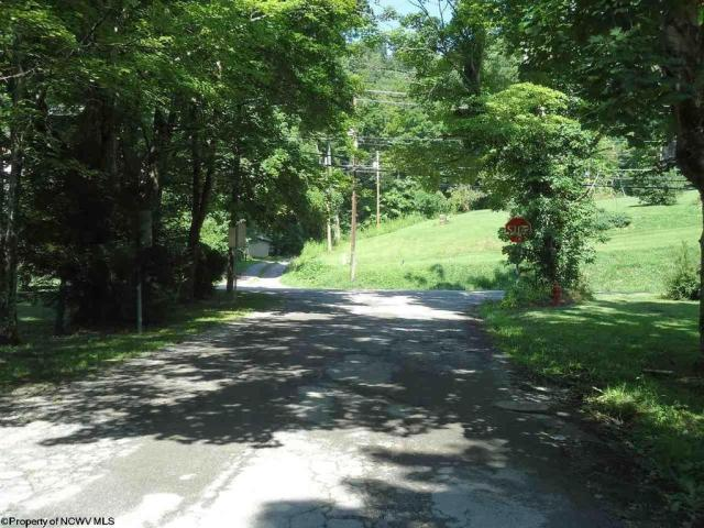 Road view featured at 23 Union St, Huttonsville, WV 26273