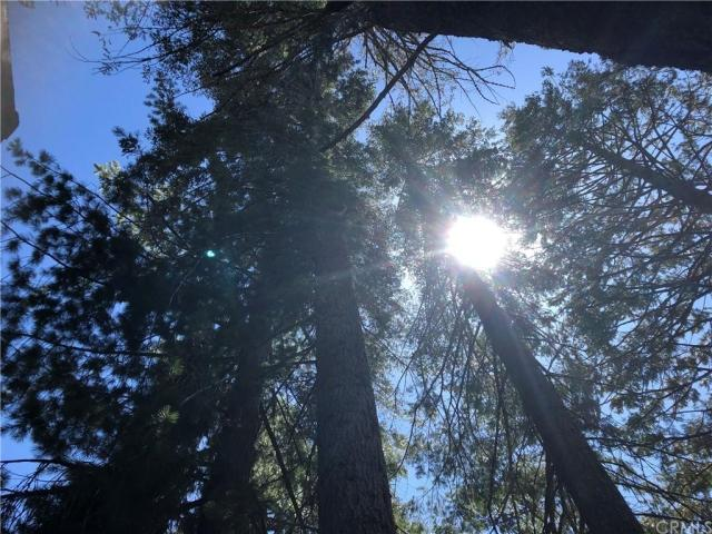 Farm land featured at 41271 Chinquapin Rd, North Fork, CA 93643