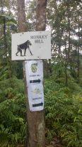 Papan tanda di puncak Monkey Hill