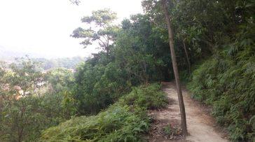 mosquito hill trail