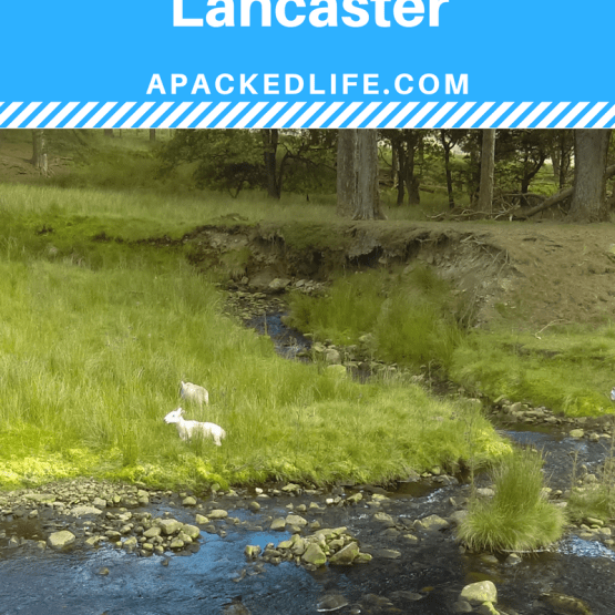 A road trip around Lancaster and Lancashire from moor to sea