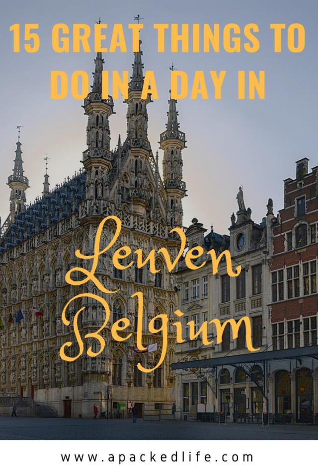 15 Great Things To Do In A Day In Leuven, Belgium
