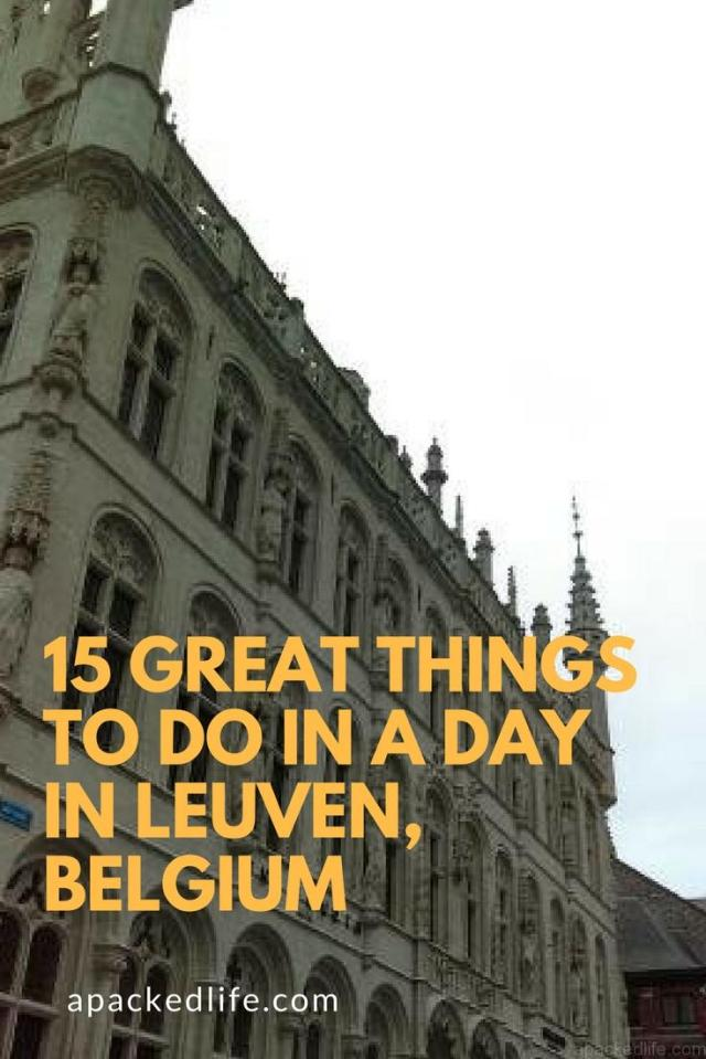 15 Great Things To Do In A Day In Leuven Belgium - Gothic architecture