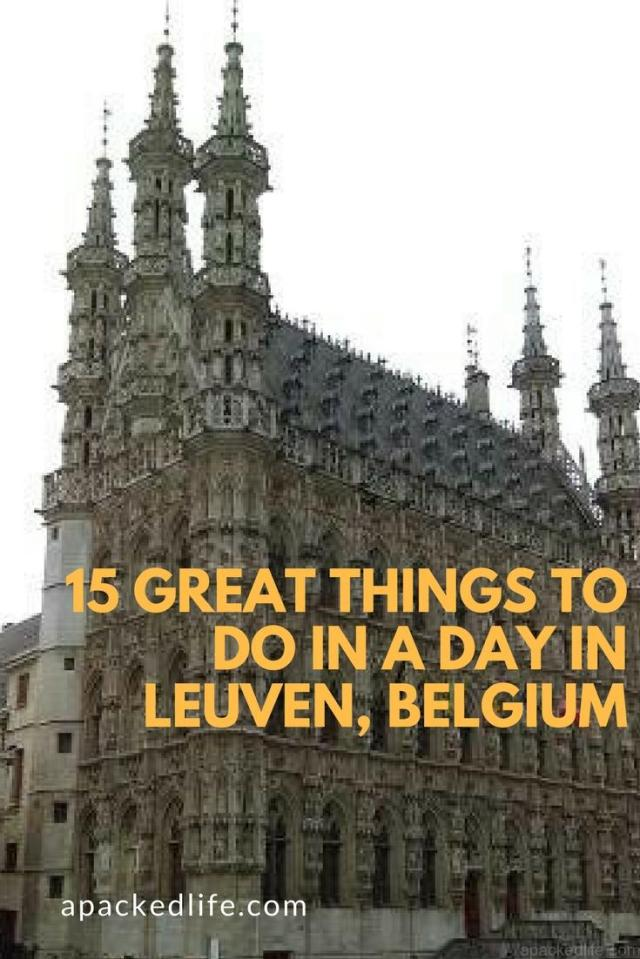 15 Great Things To Do In A Day In Leuven Belgium