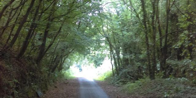 The Tarka Trail at Fremington Quay, Devon