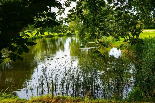 Cool or Unusual Things To Do In England - Hampstead Heath