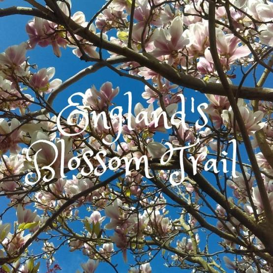 Blossom Trail in England's Vale Of Evesham