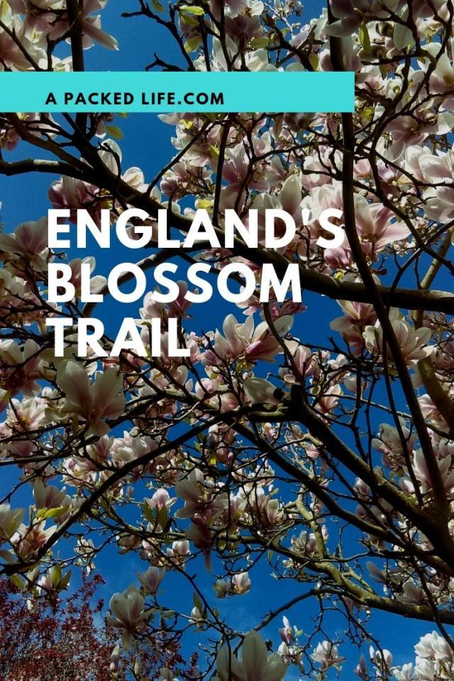 England's Blossom Trail - Vale of Evesham