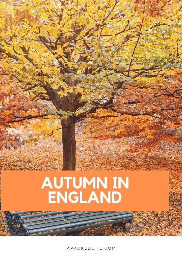 Autumn in England: Why It's A Great Time To Visit