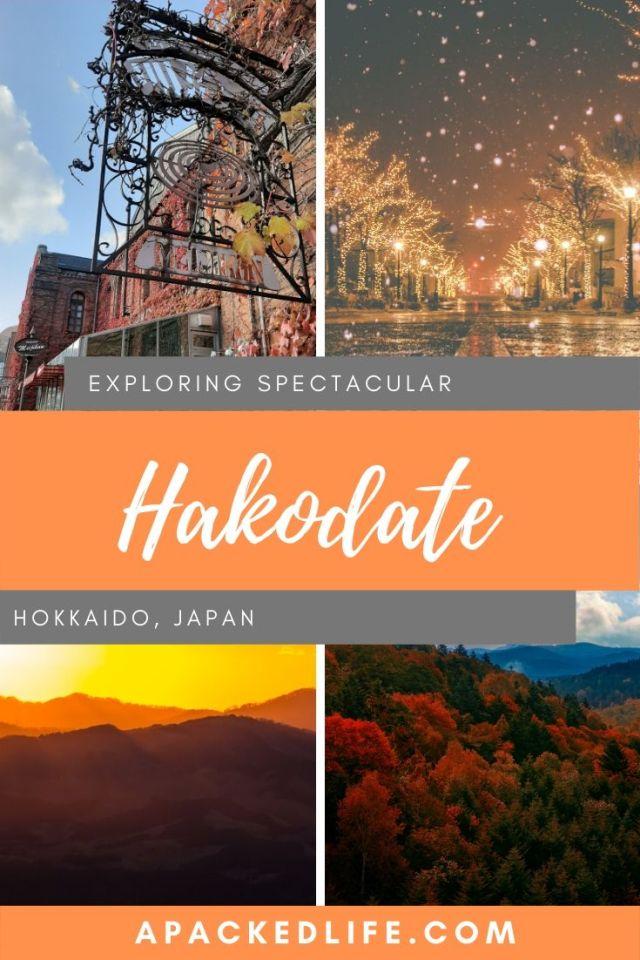 Hakodate, Hokkaido, Japan