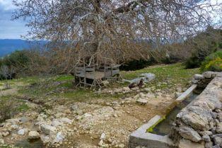 Water + platform + view = perfect camp