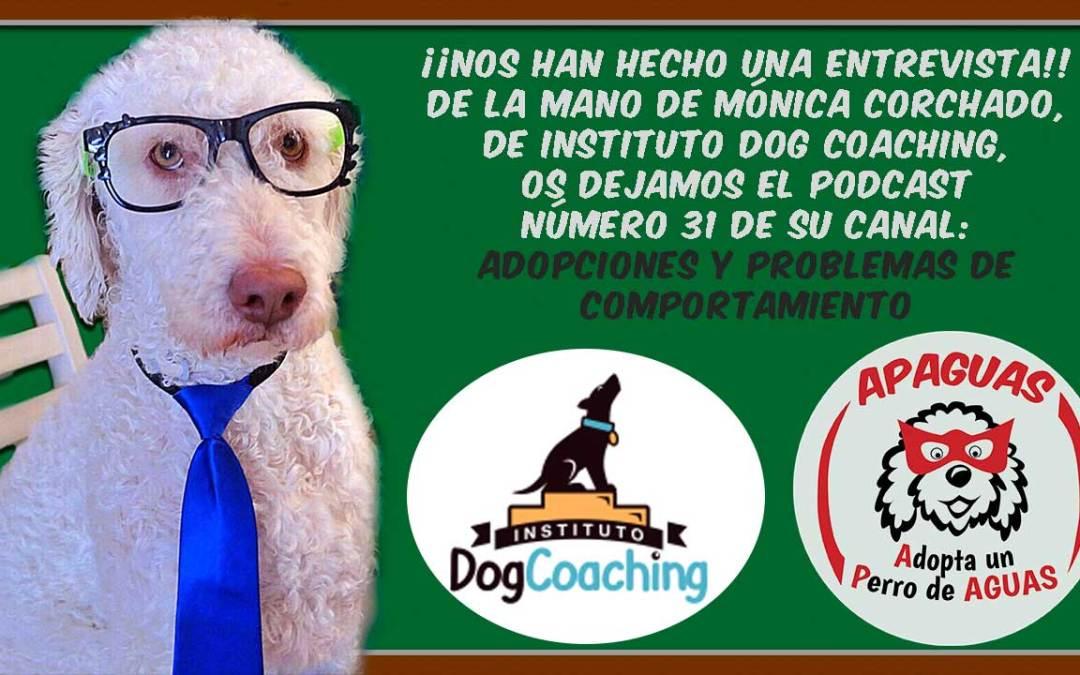 Entrevista que Mónica Corchado, de Instituto Dog Coaching, le hizo a mi Tita Ainhoa