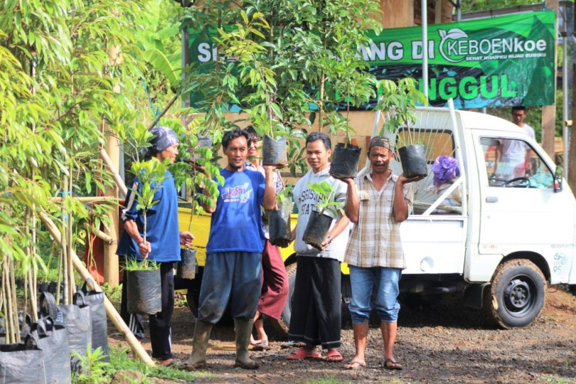 Bisnis Bibit Jadi Lokomotif Usaha Petani Muda