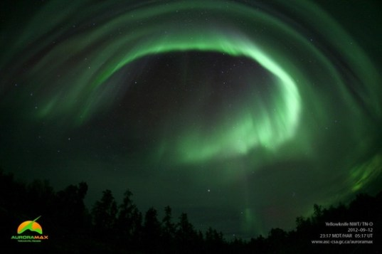 an Aurora max