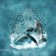 Beautiful dolphins by Brigid Ashwood on Skinit