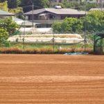 帝京第五高校野球部  2017メンバーの出身中学や注目選手紹介!!