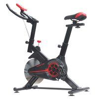 Bicicleta spinning Energy Fit EF100, volanta 8kg