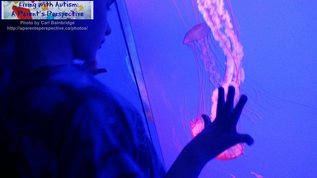 Ripley's Aquarium: Watching the Jellyfish2