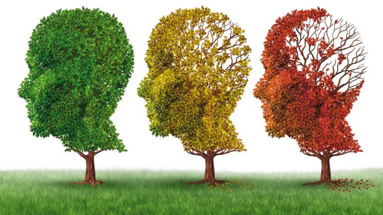 21/09 - Dia Mundial da Doença de Alzheimer