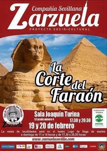 Zarzuela solidaria con APASCIDE
