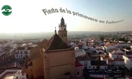 Fiesta de la primavera en Salteras
